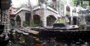 những quán cafe thuộc san vườn đẹp