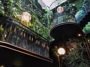 cafe sân vườn đẹp ở hcm