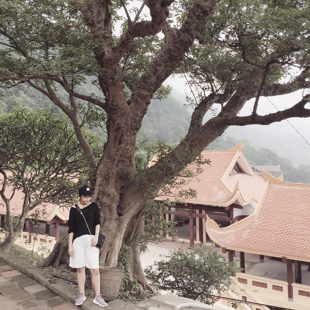 kinh-nghiem-trekking-nui-yen-tu-nhe-nhu-khong-tu-a-z-cho-hoi-banh-beo-24